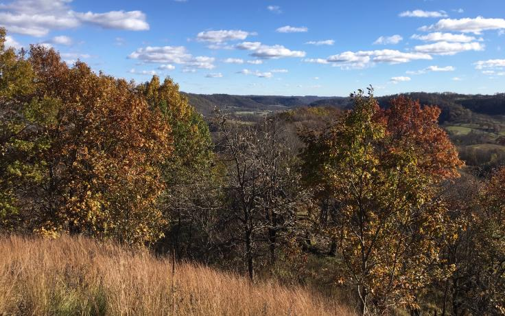 view from a ridge at Tunnelville Cliffs nature preserve – a state natural area